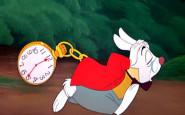 bianconiglio alice ritardatario- orologio - non si dice piacere