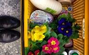 cestino spesa - esselunga - fratelli rossetti - non si dice piacere bon ton buone maniere galateo spring primavera