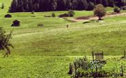CASA_castelrotto_alpe_di_siusi_ estate_mare_montagna_bon_ton_monti_non_si_dice_piacere_bon_ton_buone_maniere_galateo