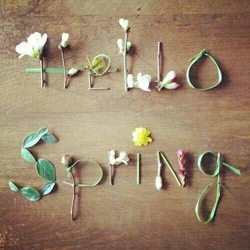 hello spring-primavera-non-si-dice-paicere-bon-ton-buone maniere