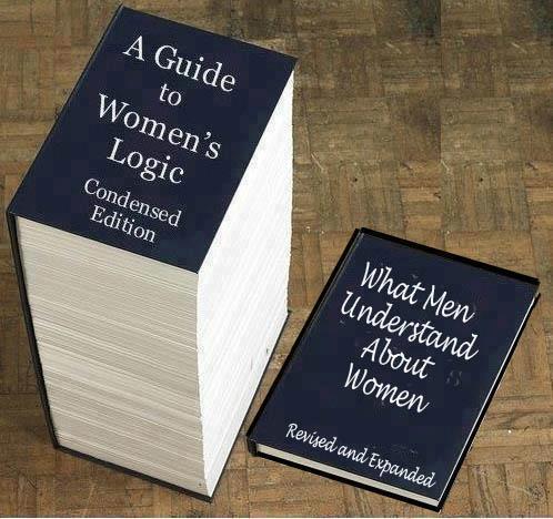 men-understanding-women-logic- guida- non si dice piacere