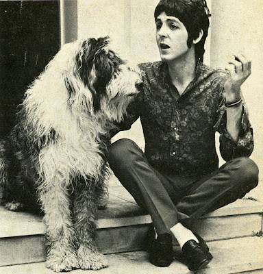 paul mc cartney-cane-dog-non si dice piacere-bon-ton galateo