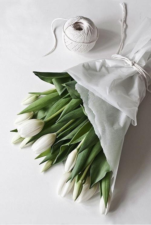 tulipani-pasqua-ispirare-non si dice piacere- galateo-fiori-buonemaniere