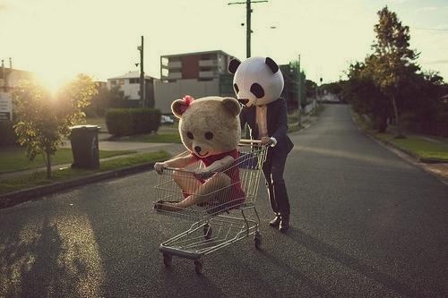 città-orsetto-panda-carrello-spesa-città-estate-non-si-dice-piacere-blog-buone-maniere