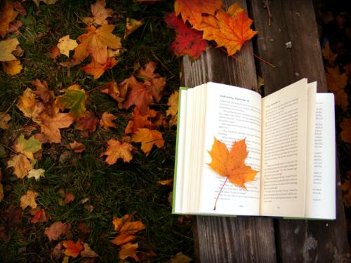 leggere-libro-autunno-finte-vacanze-non-si-dice-piacere-buone-maniere-galateo.