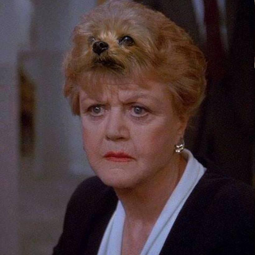 signora-in-giallo-fletcher-capelli-pettine-toccarsi-bon-ton-buone-maniere-doppie-punte-bon-ton-non-si-dice-piacere