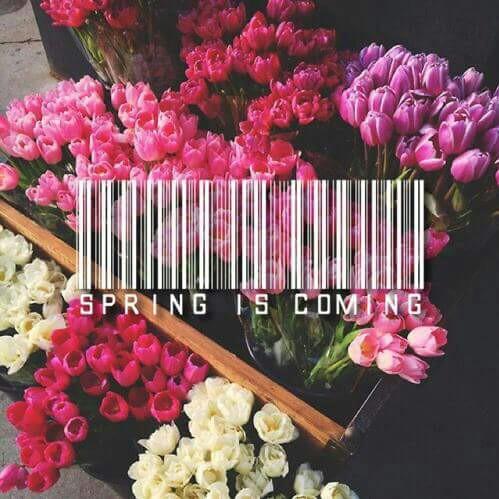 spring-is-coming-marzo-pazzerello-sensazioni-blog-lifestyle-galateo-bon-ton-primavera-non-si-dice-piacere