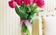 tulipani-marzo-pazzerello-sensazioni-blog-lifestyle-galateo-bon-ton-primavera-non-si-dice-piacere