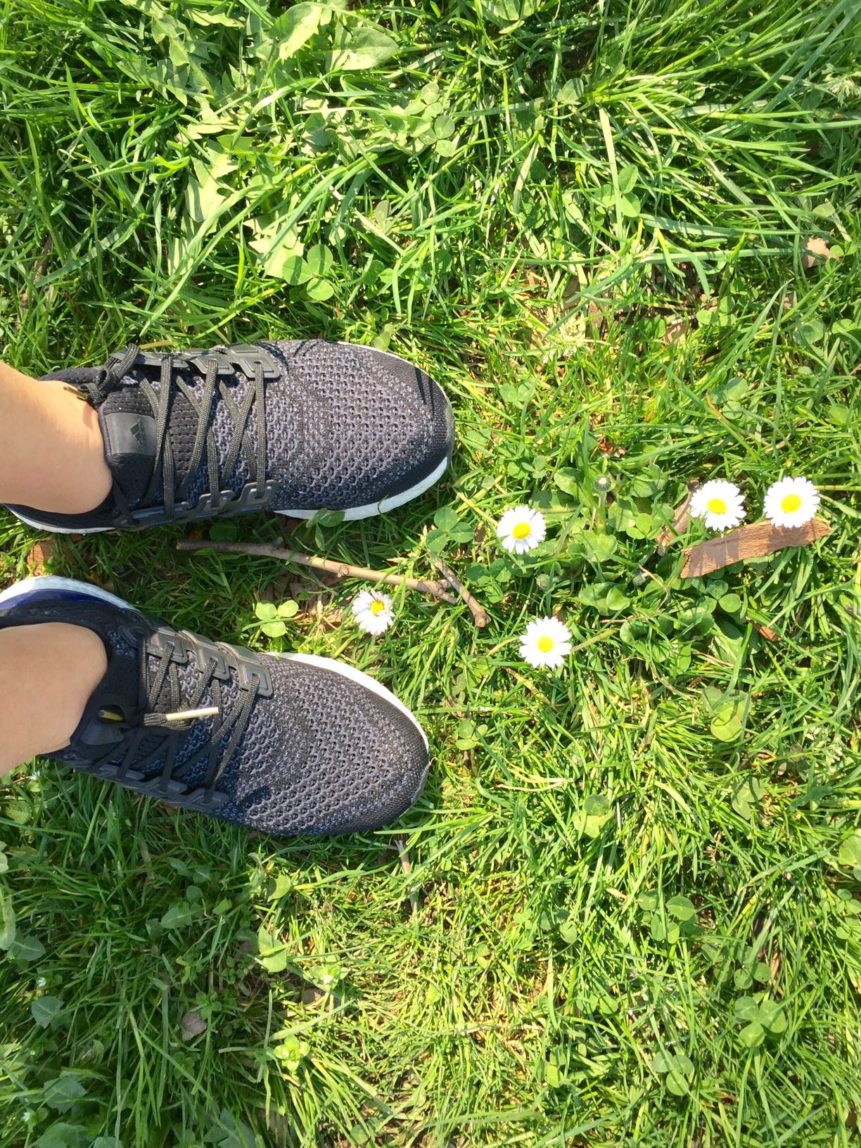 prato-ultraboost-cityrunners-adidas-milano-city-marathon-staffetta-non-si-dice-piacere-bon-ton-ultraboost