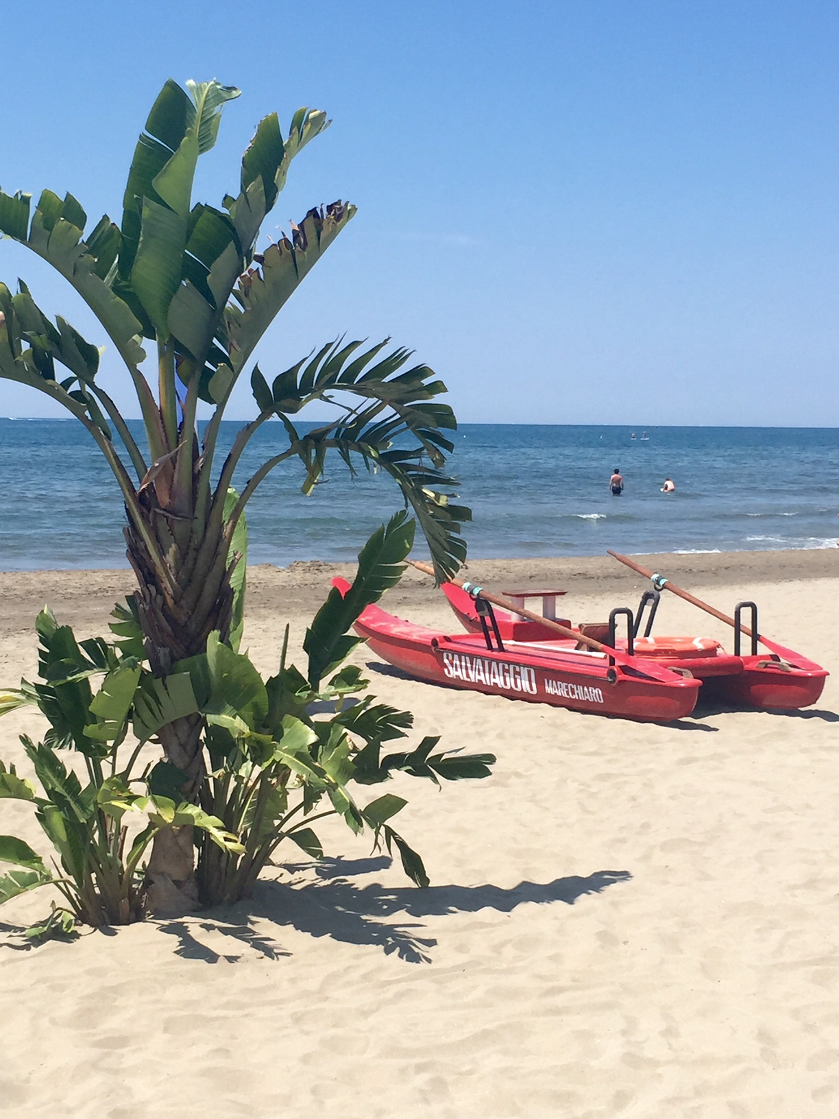 palme- pattino-spiaggia-versilia- forte