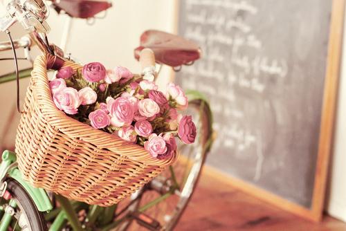 flowers - bici- mare