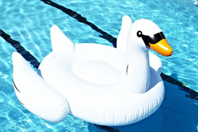 cigno-piscina-estate-conto alla rovescia vacanze