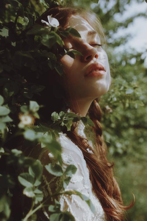 niche -profumo fiori-travolgere-ricordi