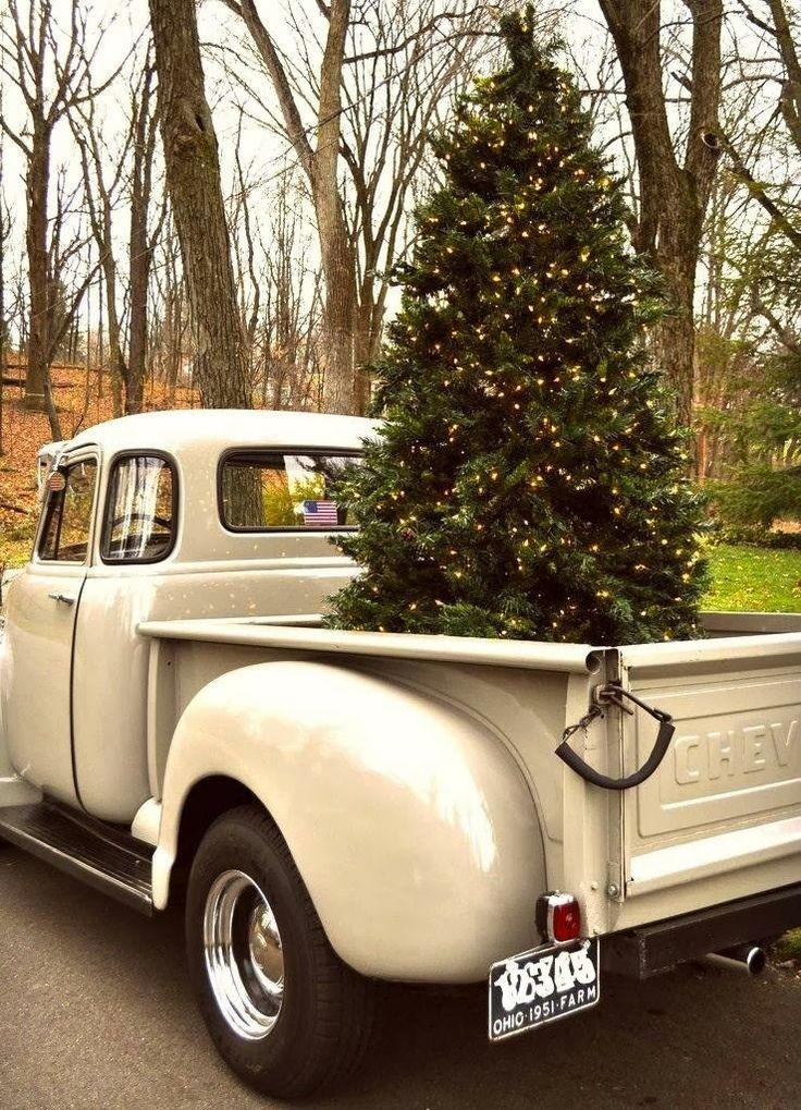 albero chic solo luci-decorazioni natale kitsch