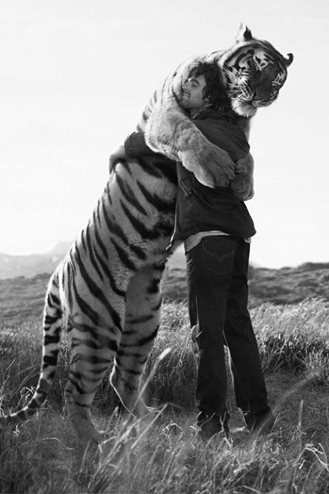 tigre uomo abbraccio- abbracci