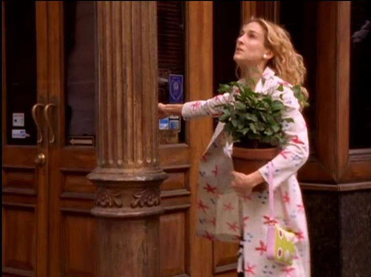 carrie_piante fiori- pollice verde
