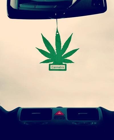profumi auto tamarri - bon ton - guida