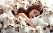 contare le pecore dormire letto vogue come dormire bene