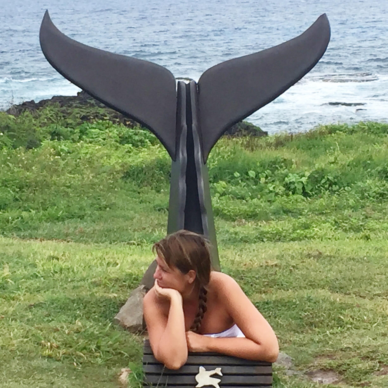 Fernando de Noronha- sirena- m useo squali- cosa vedere