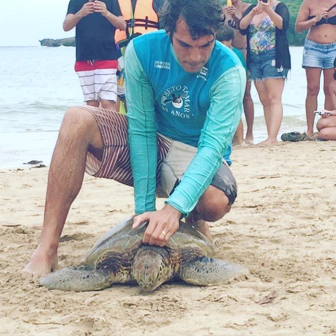 fernando de noronha tartarughe progetto tamar biologi