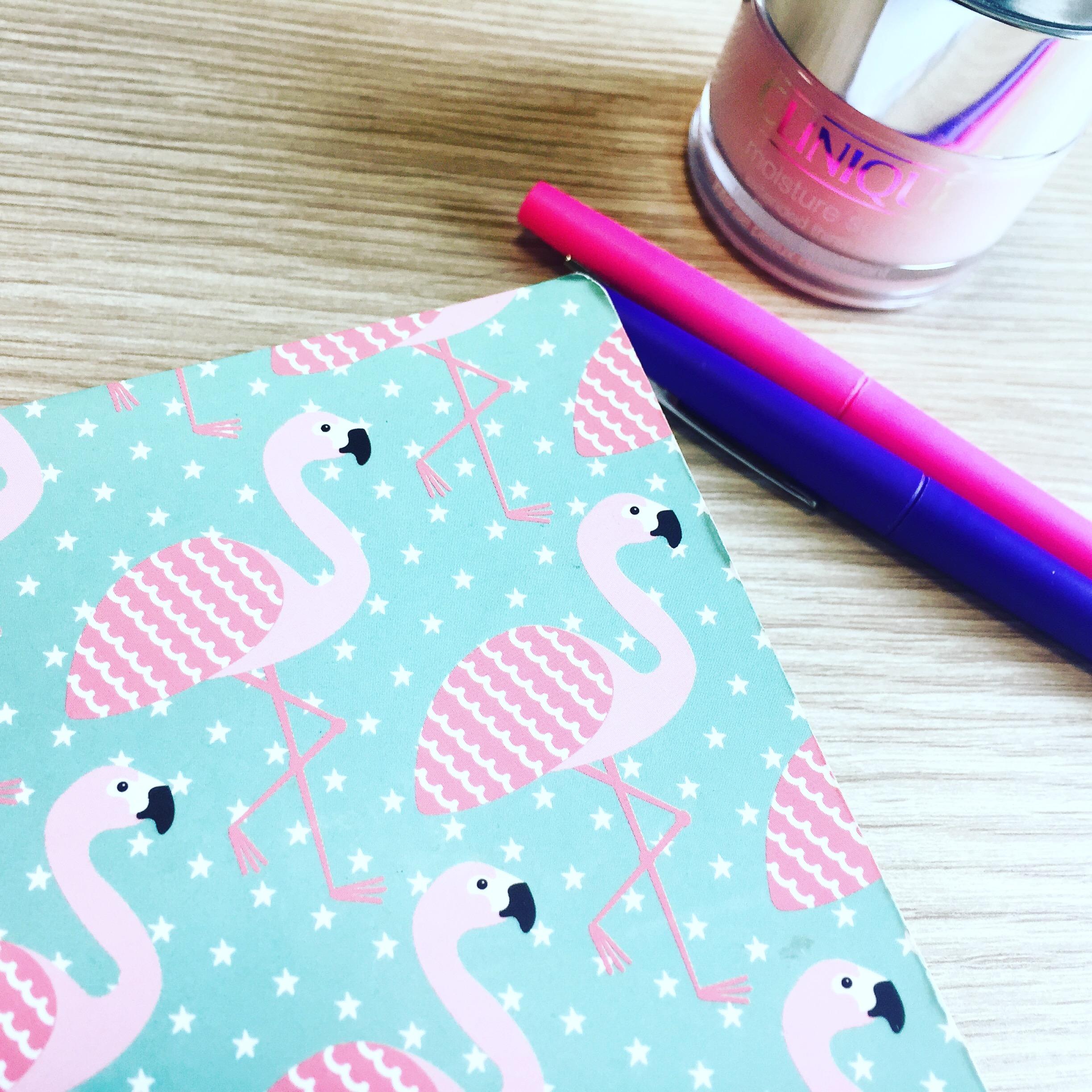 fenicotteri rosa- vita da ufficio- quaderno