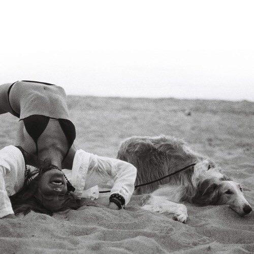 galateo bon ton cani cane spiaggia regole da seguire (2)