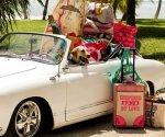 viaggiare partenze- valigie