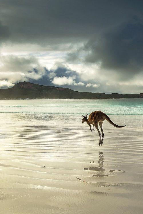 marsupio spiaggia uomo stile canguro