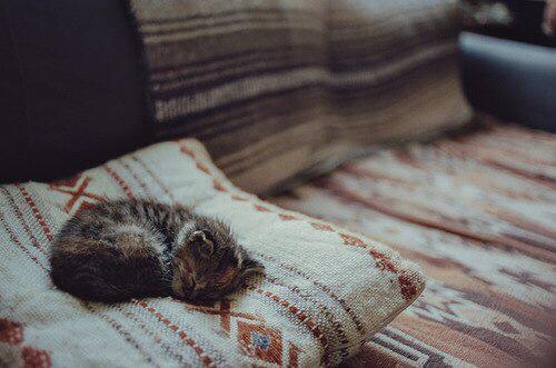 autunno-divano-pisolini-week-end-dormire