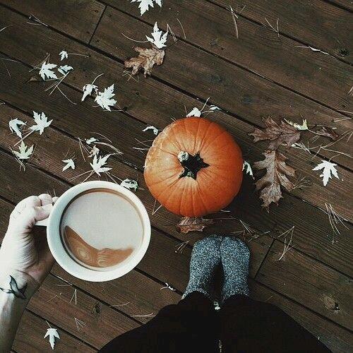 zucca-autunno-halloween-cose-che-sanno