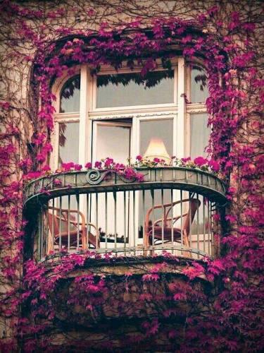 balcone-fiorito-cose-belle-vitale-importanza