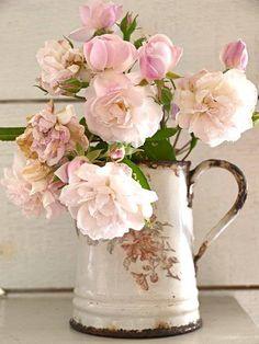 caraffe-rose- sfiorire- izia-sisley
