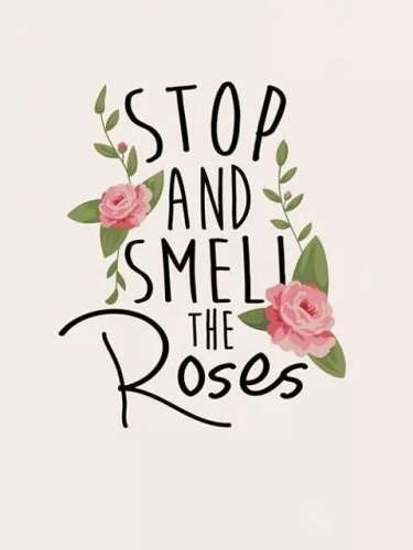 stop and smell the roses- maggio-izia-rose-sisley-paris