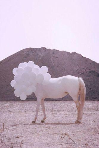 unicorno-disagio-isolarsi-Eptacaidecafobia-paura-sfortuna-buone-maniere-sfiga-perchè-come
