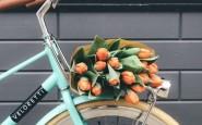 10- novità-scoperte-brand-new-aprile-maggio-primavera-2017-sorriso-regalarsi-fiori-tulipani-bici