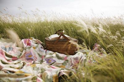 pic-nic-chic-ventee-prive-come-organizzare-cosa preparare - cibo-mise en place amici cestino