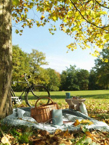 pic-nic-chic-ventee-prive-come-organizzare-cosa preparare - cibo-mise en place bicicletta
