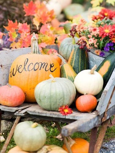 autunno-halloween-zucche-no-decorazione-welcome