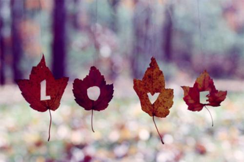 autunno-love-foglie-zucche-beauty-routine-