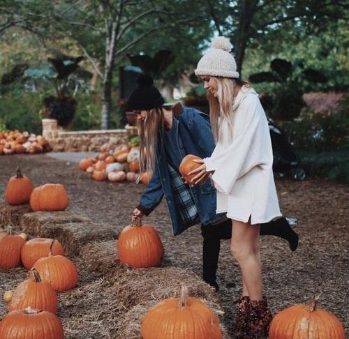 autunno-checklist-cosa-fare-casa-gite- fare zucche amiche