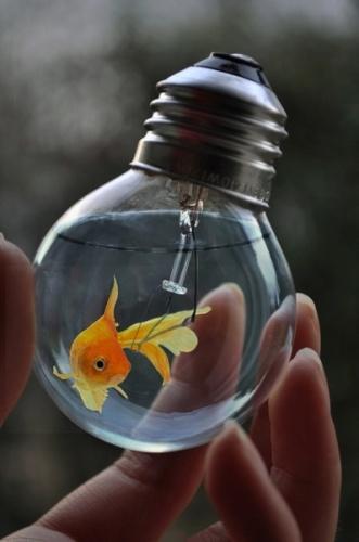 potere-citazioni-frasi-idee