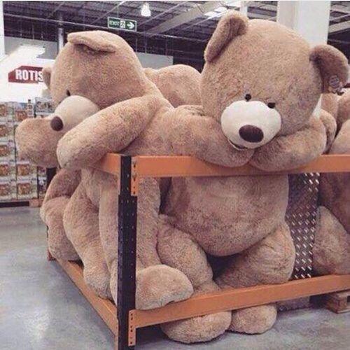 idee-regali-golosi-cosa-regalare-lui-pacchetto orso
