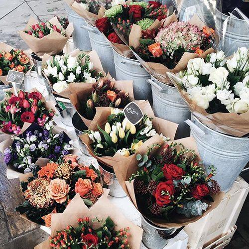 regalarsi fiori girare karma come fare