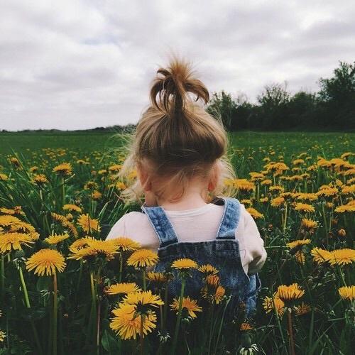 fiori campo pic nic galateo buone maniere