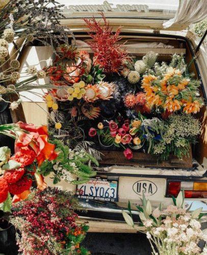 giornate non girano- no- karma-comprare- fiori