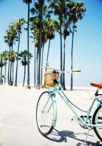 estate- palme - bici- relax- forma mentale