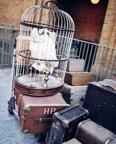 partire- tornare- viaggiare- settembre