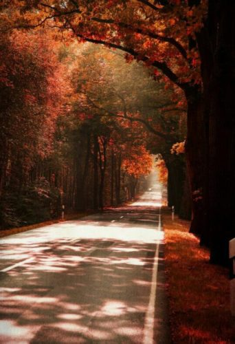 autunno- ciao- come vestirsi- scarpe - scholl