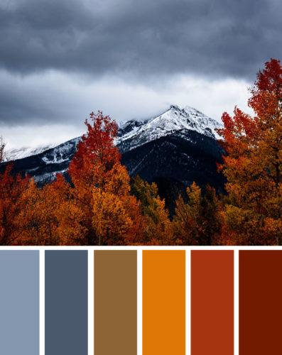 ppg-voice of colour- scelta colori cara- sigma
