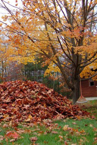 lista cose da fare autunno decorare casa non si dice piacere tisana autunnale tavola montagna